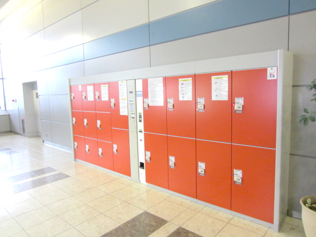 Medium (9 lockers)/ Large (10 lockers)