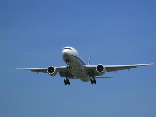 ~ 飛行機を間近で! ~