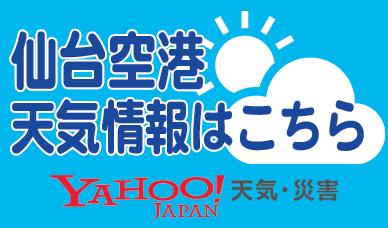 仙台空港天気情報
